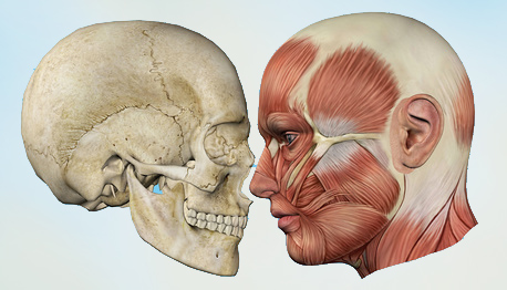 Mund-, Kiefer-, Gesichtschirurgie MKG